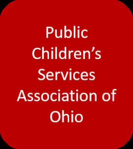 Public Children's Services Association of Ohio button