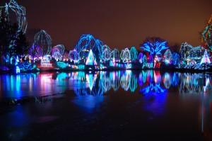 Columbus Zoo Light