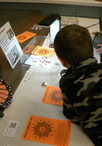 Visitors were greatly intrigued by the live Mexican jumping beans on display.