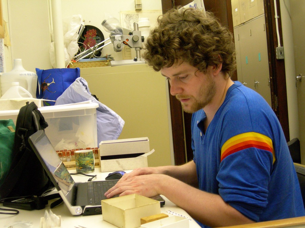 Joe Cora working on specimen data entry during a visit to the Canadian National Insect Collection on January, 2011.