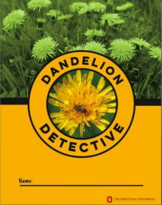 Dandelion Detective workbook cover