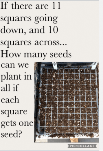 seeds in a matrix of squares