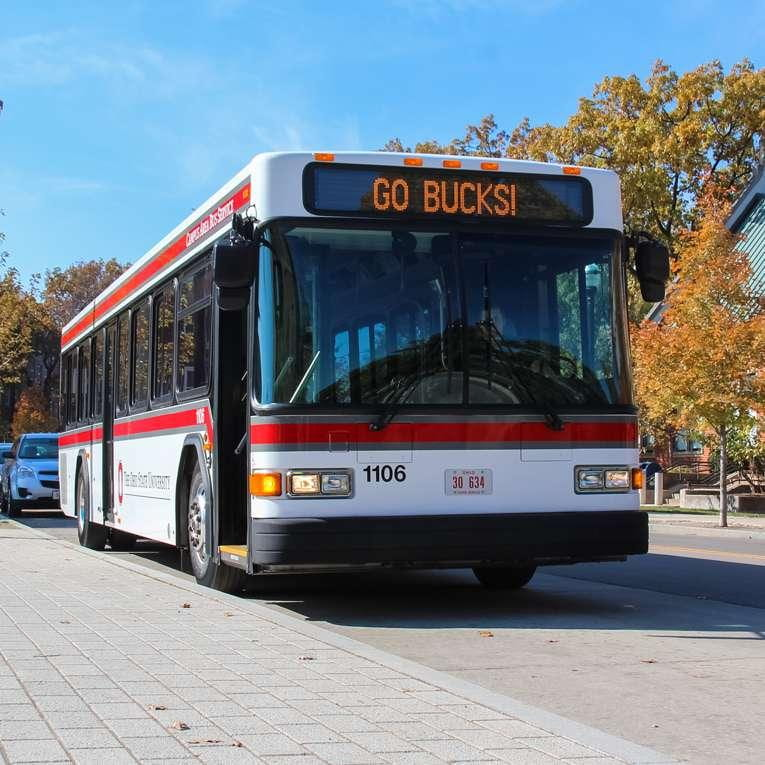 Image of a red and white OSU CABS bus displaying the words GO BUCKS