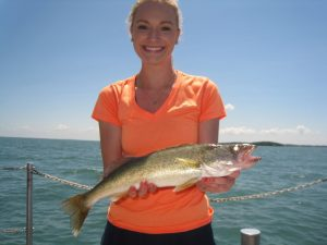 Western basin walleye