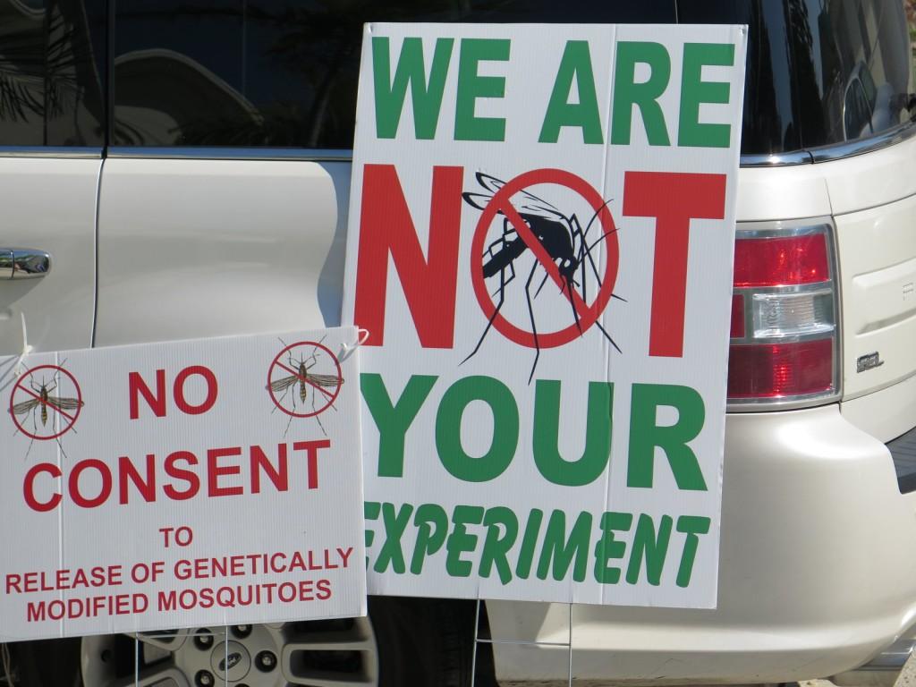 npr-protest-zika