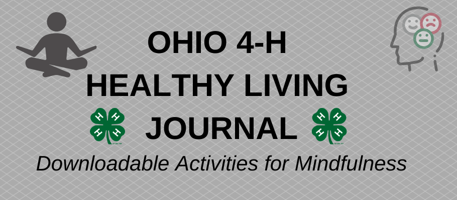 Ohio 4-H Healthy Living Journal