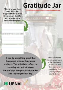 Gratitude Jar directions