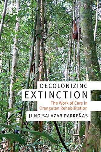 Decolonizing Extinction: The Work of Care in Orangutan Rehabilitation by Dr. Juno Parreñas