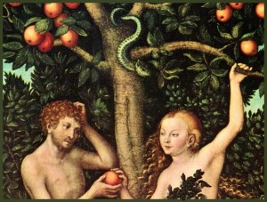 ADAM AND EVE-APPLE-SNAKE+FRAME-9X6