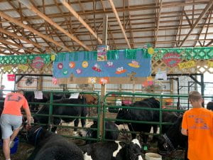 Madison County 4-H | Timely information about all things