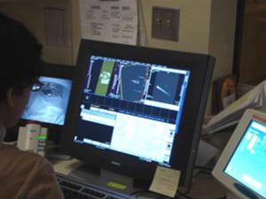 imaging freshwater mussel vascular system