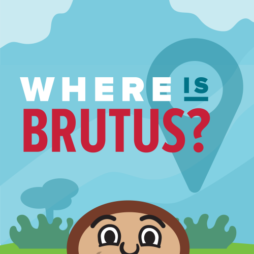 Where is Brutus?
