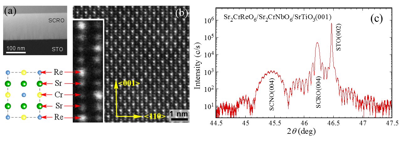 STEM images of a 134-nm thick Sr2CrReO6 (001) film grown on SrTiO3 viewed along the <11 ̅0> direction (a) at low magnification showing a uniform film, and (b) at high magnification revealing the clear contrast of Sr, Cr, and Re atoms. The inset in (b) highlights the atomic contrast, which matches (c) the schematic projection of DP lattice along the <11 ̅0> direction.
