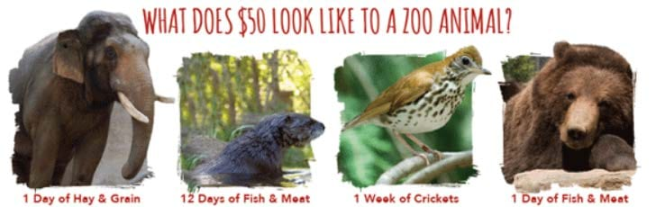 What does $50 look like to a zoo animal? 1 Day of Hay & Grain; 12 Days of Fish & Meat; 1 Week of Crickets; 1 Day of Fish & Meat