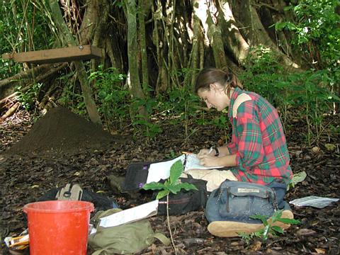 Working at archaeology