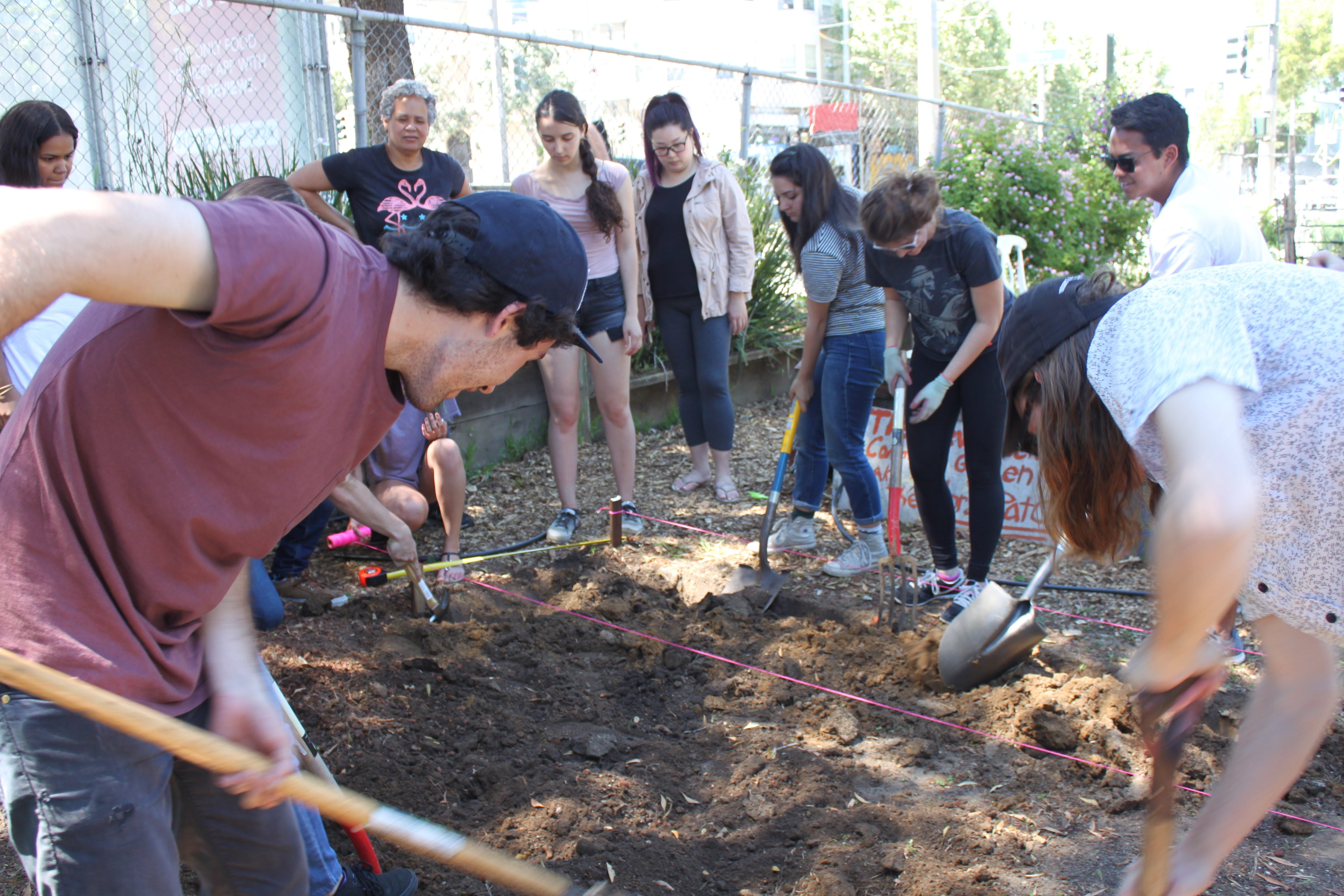 Students in a Community Garden