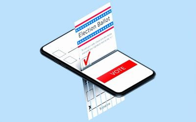 Blackbox: Online voting in the 2020 elections