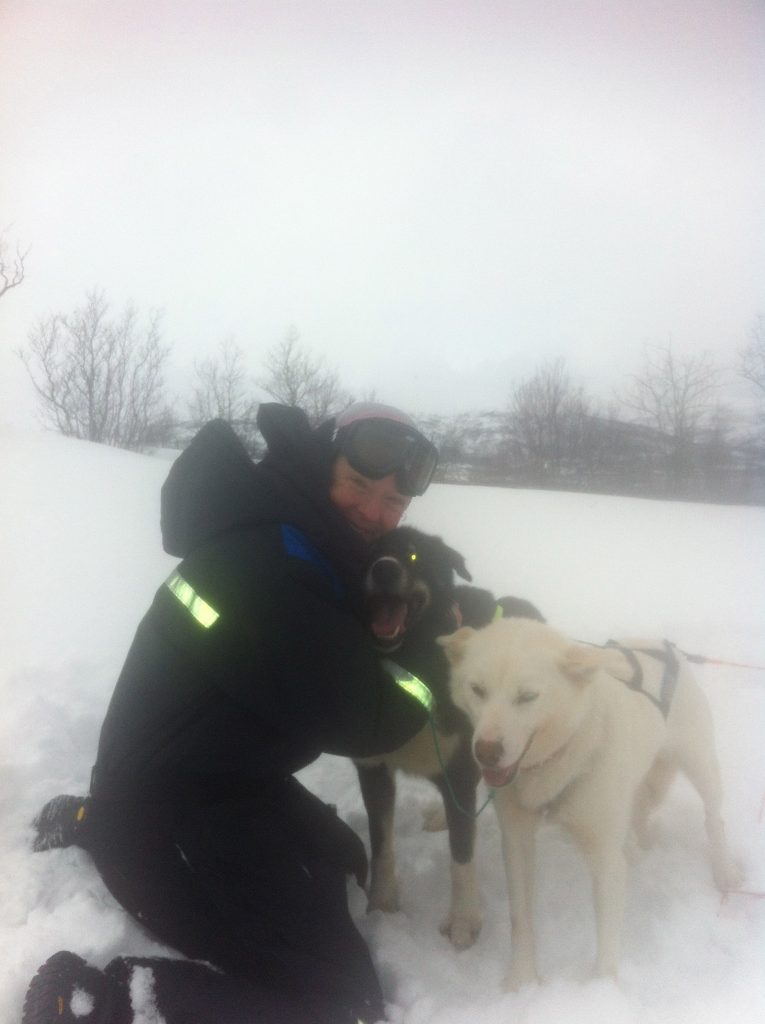 Woman with two sled dogs