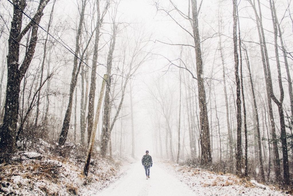 Person walking on a paved road through a forest in winter