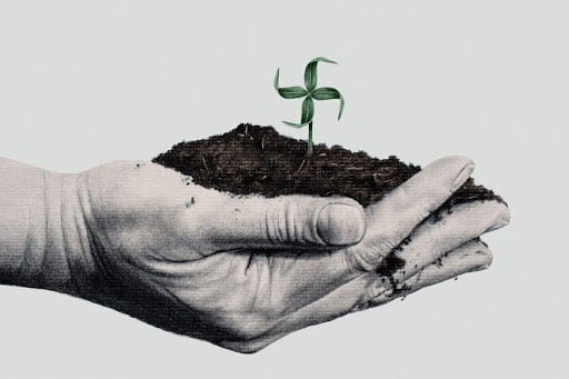 Hands holding a clump of dirt with a single plant growing.