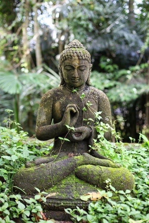 A buddhist statue in the forest surrounded by greenery.