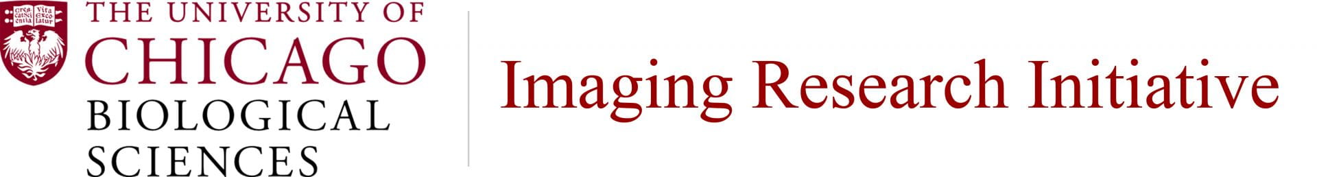 BSD Imaging Research Initiative