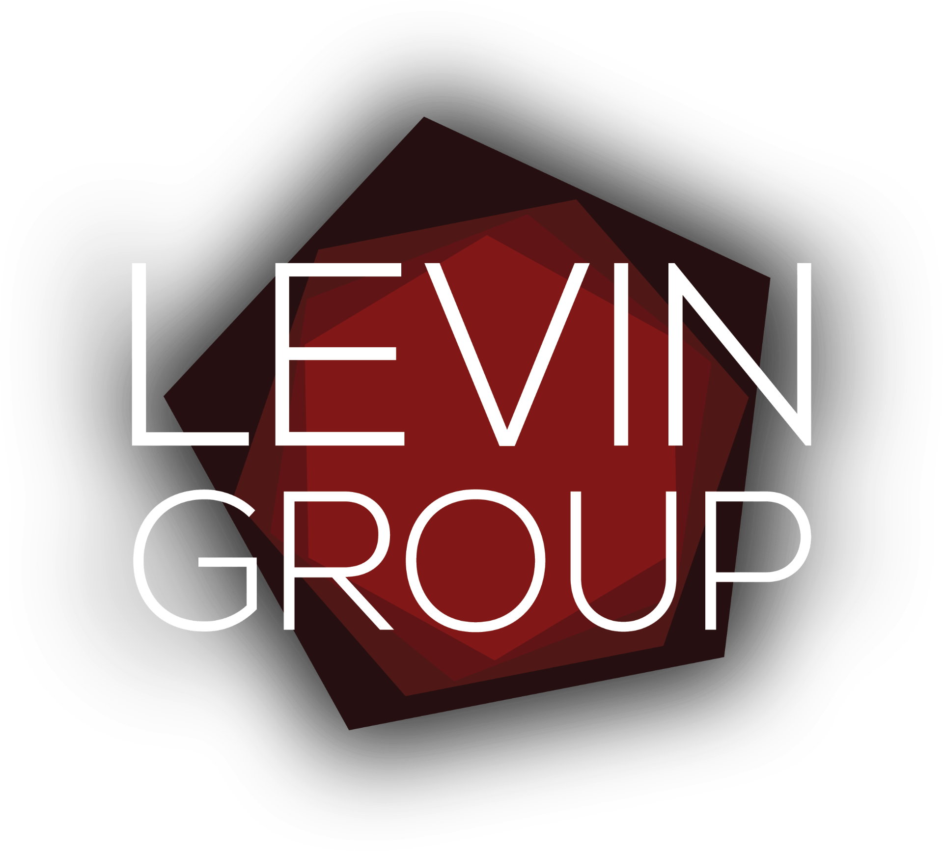 The Levin Group