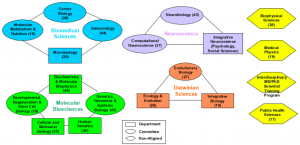 An infographic of the biological science division's organization into clusters and programs