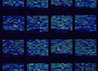 Blue and green DNA microarrays