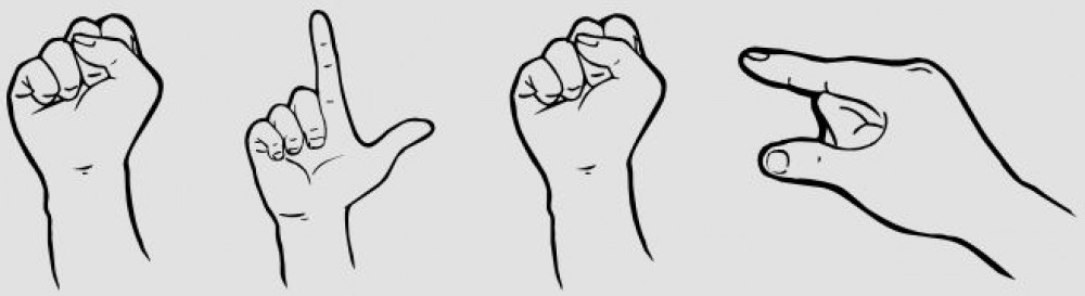 Sign Language Study Group