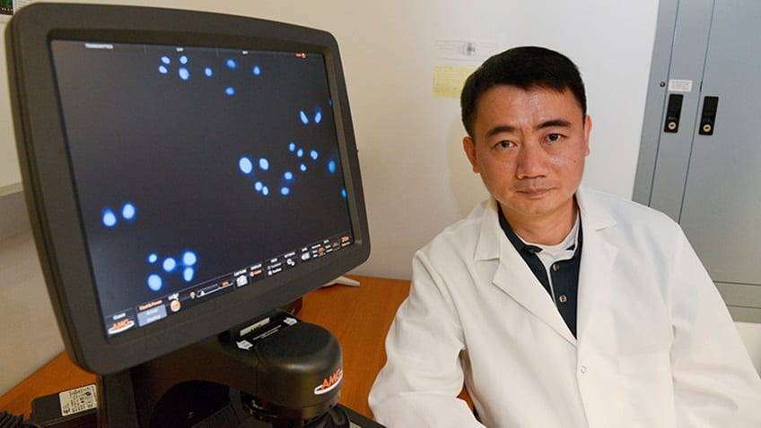 UChicago Researcher Sees Skin Grafts as Noninvasive, Cost-effective Way to Treat Disease