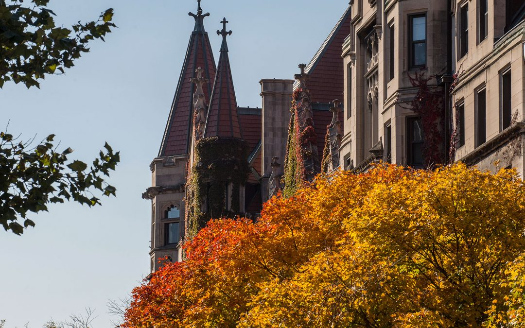 Autumn trees and neo-gothic buildings