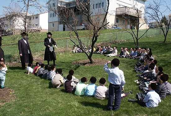 treelearning.KJ