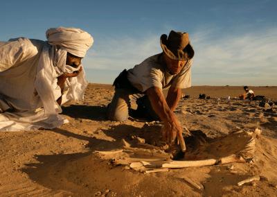 ✓ People of the Green Sahara
