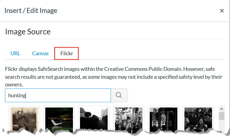 Example of Flickr Search Results