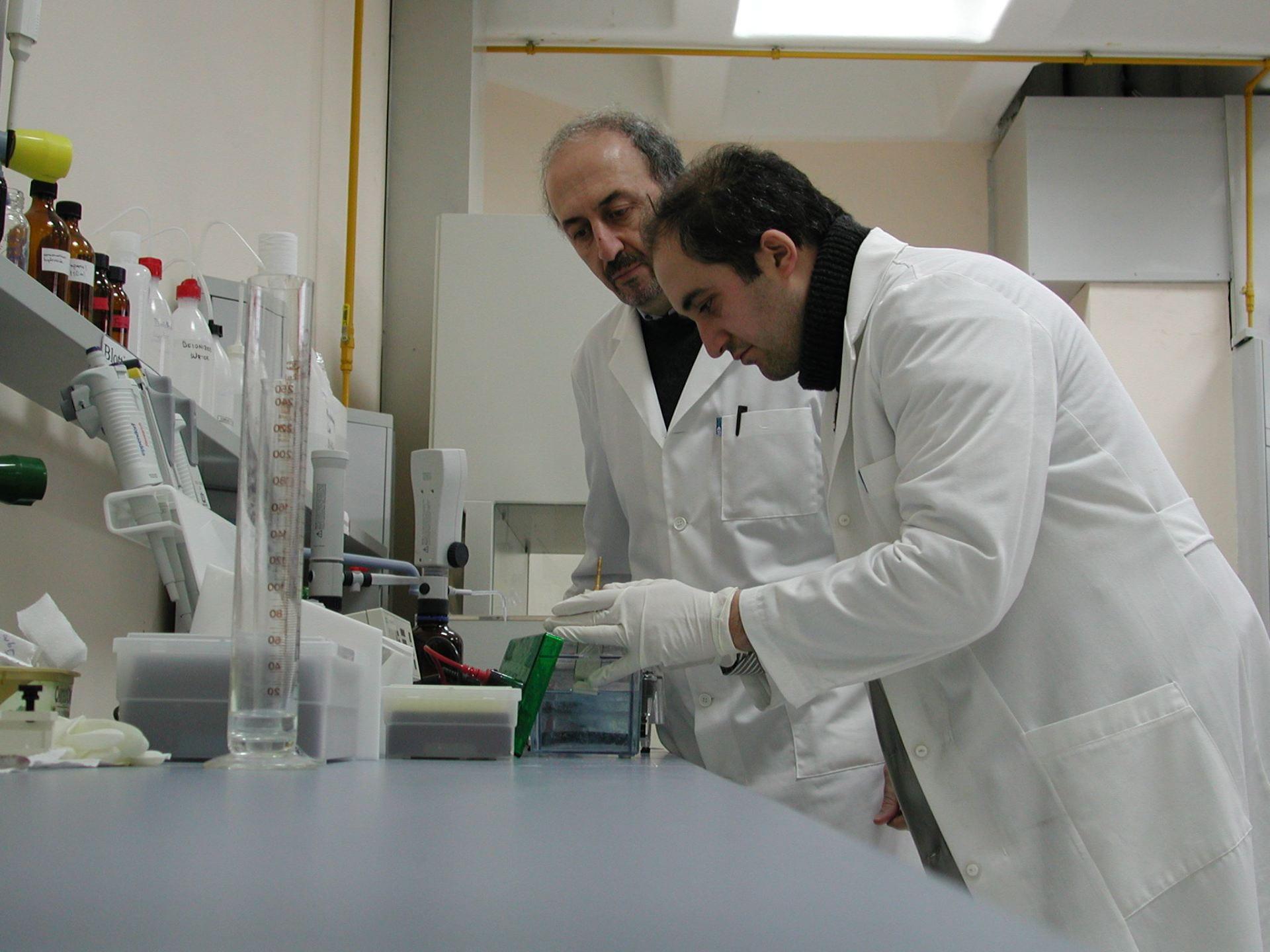My Supervisor Prof Dr Barik Salih