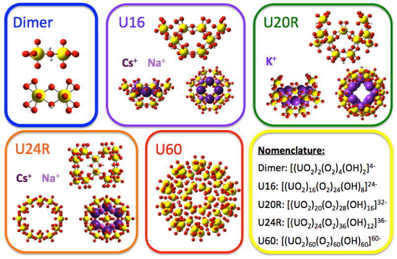Examples of uranyl models used in the study of uranyl nano cluster formation