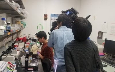 "National Broadcast Japan comes to film Coates Lab for ""Science View""!"