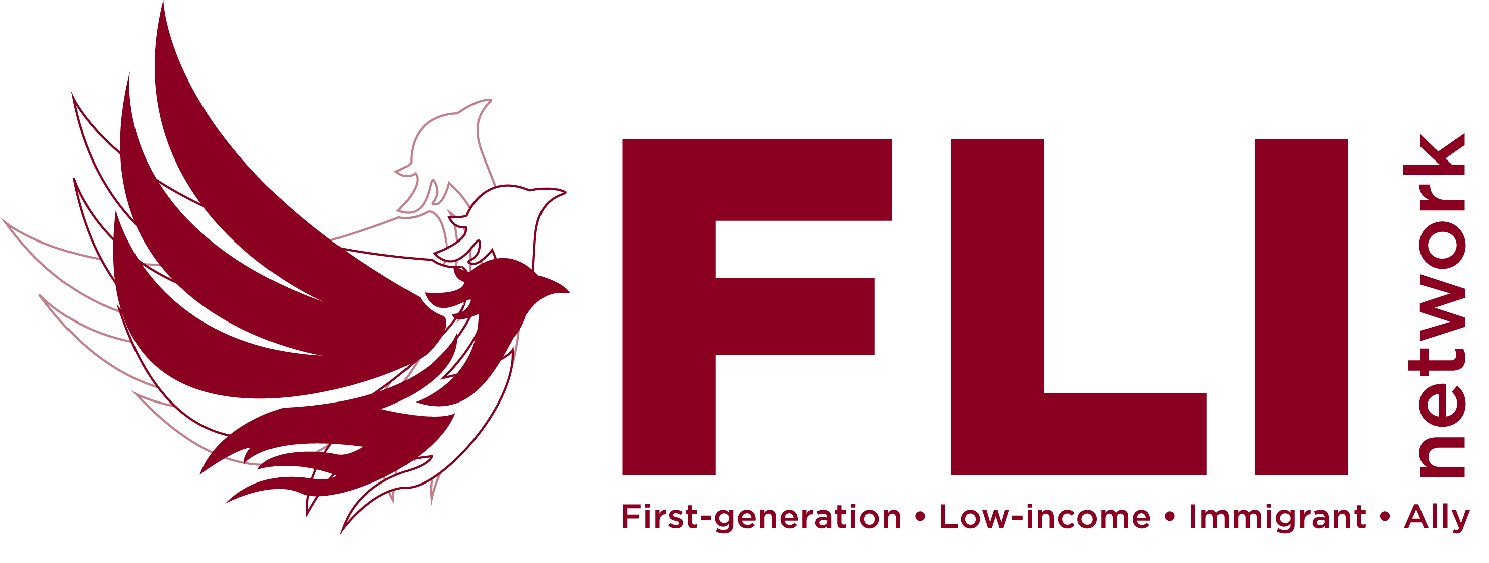First Generation Low Income Immigrant Network