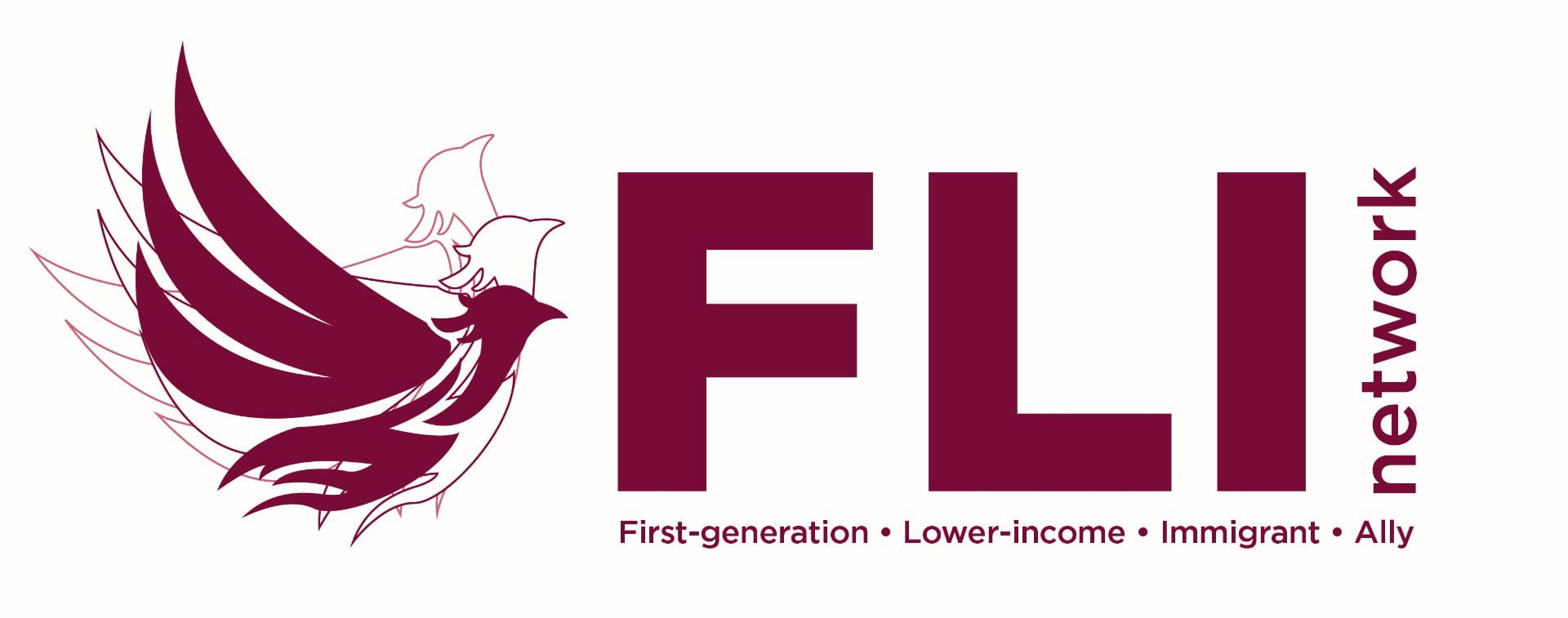 First Generation Lower Income Immigrant Network