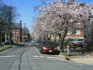 Street in Fredericksburg, VA photo