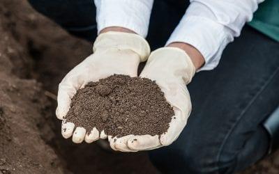 Tending the Soil