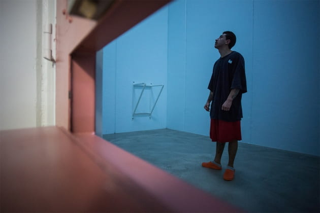 Nature videos help to calm inmates in solitary confinement