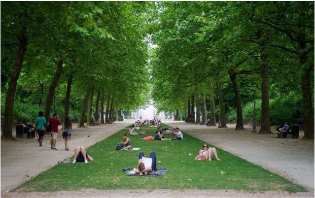 Living near trees is good for your health