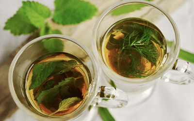 Uncovering the benefits of herbal medicine