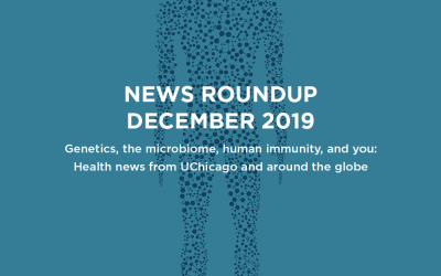 News roundup: December 2019