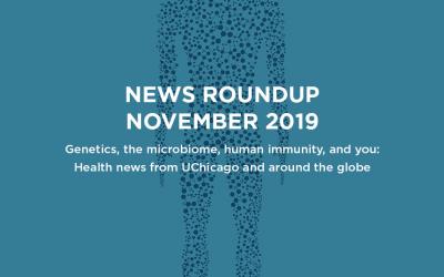 News roundup: November 2019