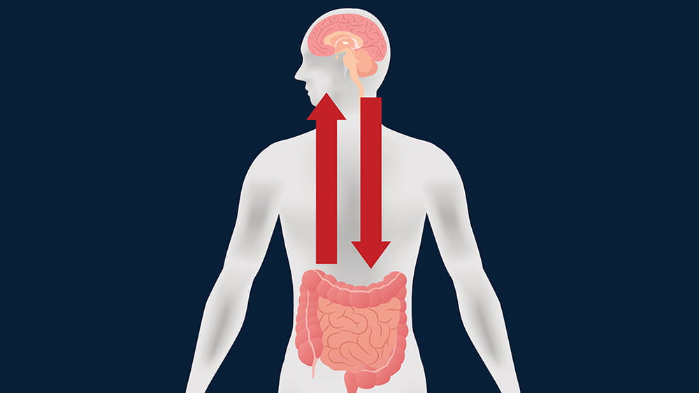 The road to the brain: Through the gut?