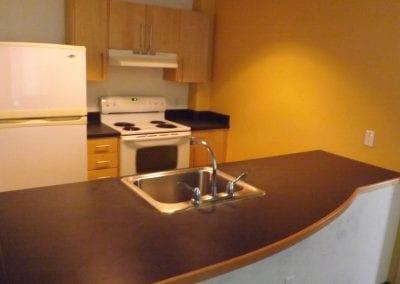 Renee Granville-Grossman Apartment Kitchen