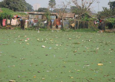 Dhaka5-1cev8bb